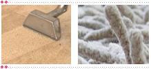 Detroit Carpet Cleaning Service