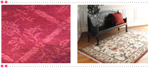 About Detroit Carpet Cleaning | rug Cleaning